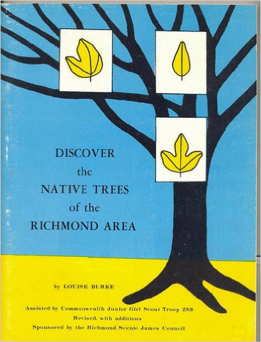Image for Discover the Native Trees of the Richmond Area