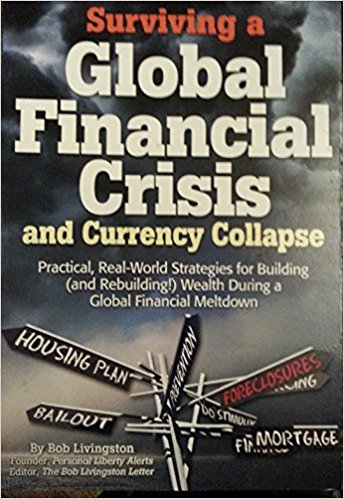 Image for Surviving the Global Financial Crisis and Currency Collapse (A Survival Treasury)