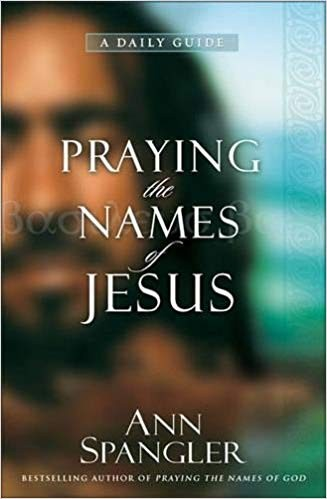 Image for Praying the Names of Jesus: A Daily Guide