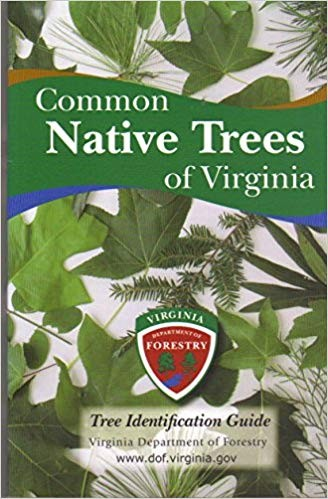 Image for Common Native Trees of Virginia, Tree Identification Guide