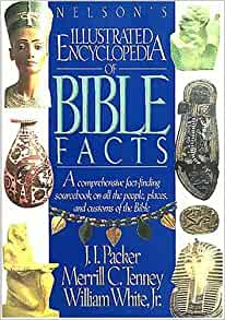 Image for The Illustrated Encyclopedia Of Bible Facts